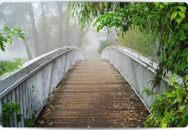 life transitions building a bridge