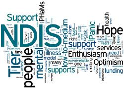 ndis disability